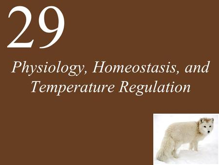 Physiology, Homeostasis, and Temperature Regulation 29.