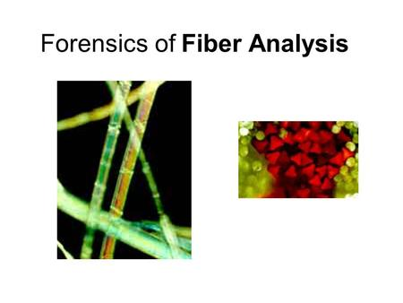 Forensics of Fiber Analysis. Fibers A fiber is the smallest unit of a textile material that has a length many times greater than its diameter. Fibers.