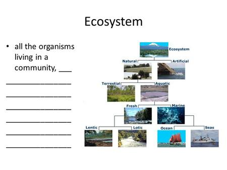 Ecosystem all the organisms living in a community, ___ _______________.
