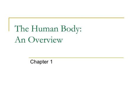The Human Body: An Overview Chapter 1. An Overview… Anatomy – the study of the structure and shape of the body and body parts and their relationship with.