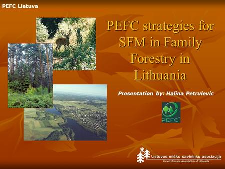PEFC Lietuva PEFC strategies for SFM in Family Forestry in Lithuania Presentation by: Halina Petrulevic.