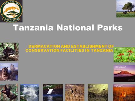 Tanzania National Parks DERMACATION AND ESTABLISHMENT OF CONSERVATION FACILITIES IN TANZANIA.