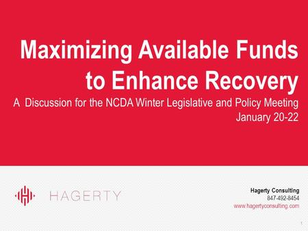1 Hagerty Consulting 847-492-8454 www.hagertyconsulting.com Maximizing Available Funds to Enhance Recovery A Discussion for the NCDA Winter Legislative.