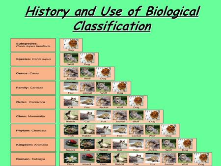 History and Use of Biological Classification