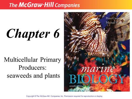 Copyright © The McGraw-Hill Companies, Inc. Permission required for reproduction or display. Chapter 6 Multicellular Primary Producers: seaweeds and plants.