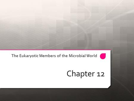 Chapter 12 The Eukaryotic Members of the Microbial World.