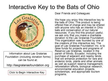 Interactive Key to the Bats of Ohio Dear Friends and Colleagues: We hope you enjoy this interactive key to the bats of Ohio. This product is being offered.