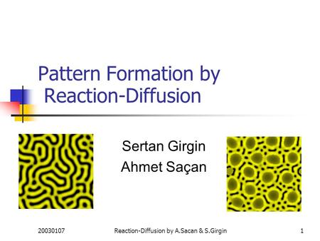20030107Reaction-Diffusion by A.Sacan & S.Girgin1 Pattern Formation by Reaction-Diffusion Sertan Girgin Ahmet Saçan.