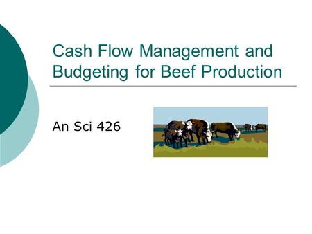 Cash Flow Management and Budgeting for Beef Production An Sci 426.