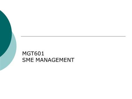 MGT601 SME MANAGEMENT. Lesson 17 Financial Feasibility of SMEs.