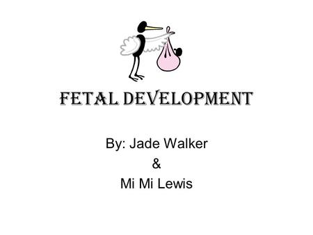 Fetal Development By: Jade Walker & Mi Mi Lewis. The Beginning The beginning of the process in fetal development is when the egg is joined with the sperm.