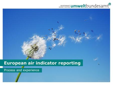 1 European air indicator reporting Process and experience © iStockphoto.com/cmisje.