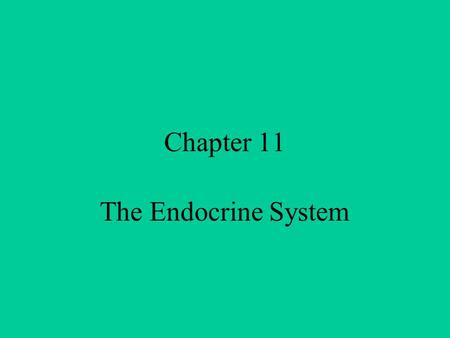 Chapter 11 The Endocrine System Endocrine vs. Exocrine Exocrine – have ducts (tubes) Endocrine - ductless Secreted directly into body fluids Regulated.