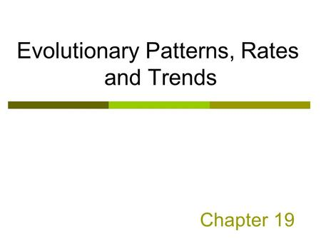 Chapter 19 Evolutionary Patterns, Rates and Trends.