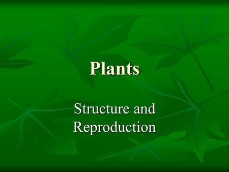 Plants Structure and Reproduction. Characteristics of Plants  Autotrophic  Multicellular  Eukaryotic  Cell wall made of cellulose  Organelles including.