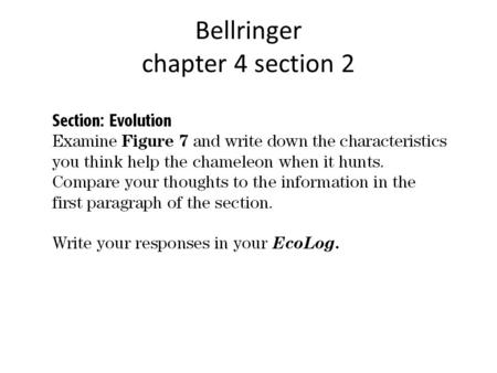 Bellringer chapter 4 section 2. Objectives Explain the process of evolution by natural selection. Explain the concept of adaptation. Describe the steps.
