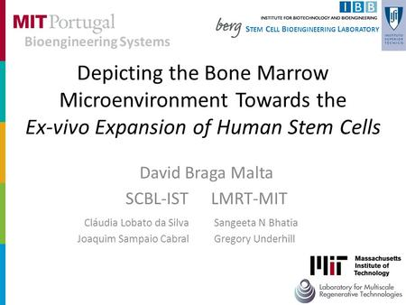 Depicting the Bone Marrow Microenvironment Towards the Ex-vivo Expansion of Human Stem Cells David Braga Malta SCBL-IST LMRT-MIT S TEM C ELL B IOENGINEERING.