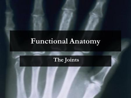Functional Anatomy The Joints.