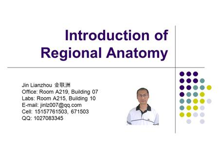 Introduction of Regional Anatomy Jin Lianzhou 金联洲 Office: Room A219, Building 07 Labs: Room A215, Building 10   Cell: 15157761503,