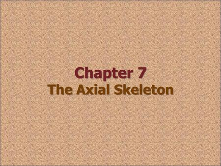 Chapter 7 The Axial Skeleton. 7-1: Axial Skeleton skullvertebral column thoracic cage Includes skull, vertebral column, & thoracic cage Supports & protects.