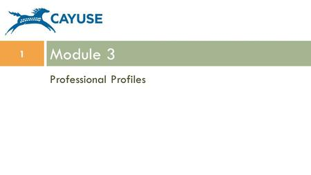 Professional Profiles Module 3 1. Objectives  In this module you will learn:  Professional Profile basics  How to create a Professional Profile  How.
