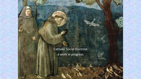 Catholic Social Doctrine a work in progress. welcome and introduction This is the first in a series of Professional Learning activities offered to the.