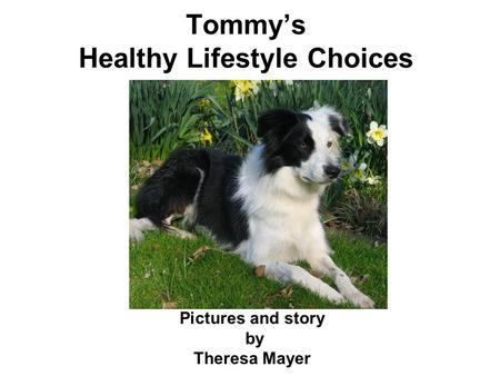 Tommy's Healthy Lifestyle Choices Pictures and story by Theresa Mayer.
