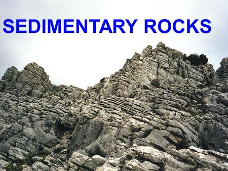 SEDIMENTARY ROCKS. Sedimentary Rocks 80 % of Earth's surface is covered with sediments and Sedimentary Rocks.