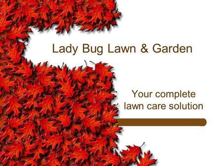 Lady Bug Lawn & Garden Your complete lawn care solution.