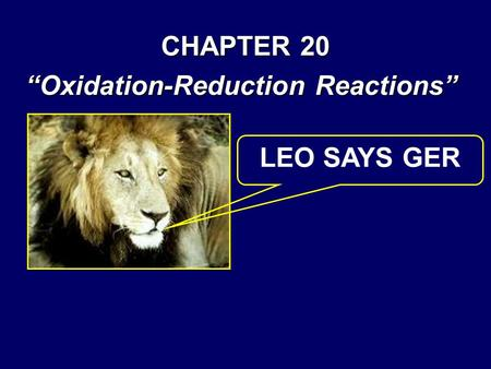 "CHAPTER 20 ""Oxidation-Reduction Reactions"" LEO SAYS GER."