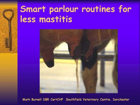 Smart parlour routines for less mastitis Mark Burnell DBR CertCHP Southfield Veterinary Centre, Dorchester.