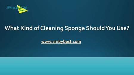 What Kind of Cleaning Sponge Should You Use? www.smbybest.com.