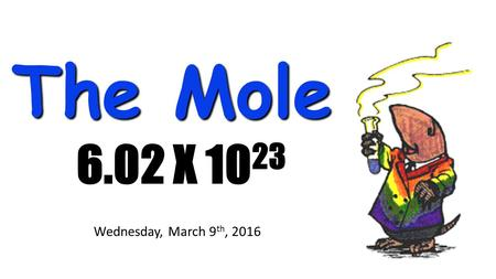 The Mole 6.02 X 10 23 Wednesday, March 9 th, 2016.