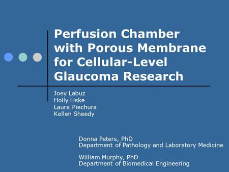 Perfusion Chamber with Porous Membrane for Cellular-Level Glaucoma Research Joey Labuz Holly Liske Laura Piechura Kellen Sheedy Donna Peters, PhD Department.