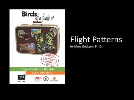 Flight Patterns by Mary Erickson, Ph.D.. There's something magical about the birds that live around us.