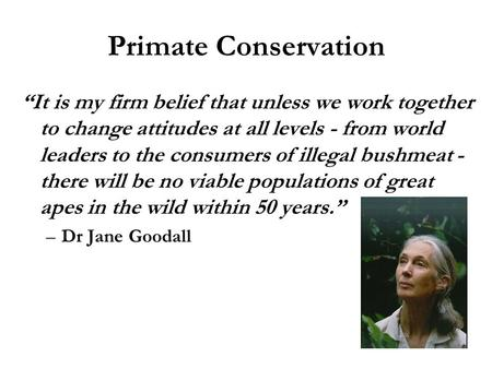 "Primate Conservation ""It is my firm belief that unless we work together to change attitudes at all levels - from world leaders to the consumers of illegal."