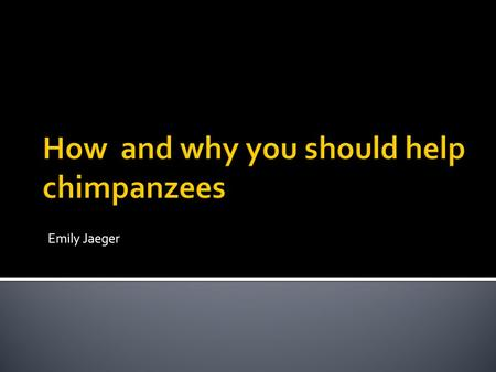 Emily Jaeger.  Wild chimpanzees living in Africa are endangered  Rapid human population growth  Loss of habitats.