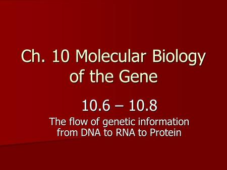 Ch. 10 Molecular Biology of the Gene 10.6 – 10.8 The flow of genetic information from DNA to RNA to Protein.