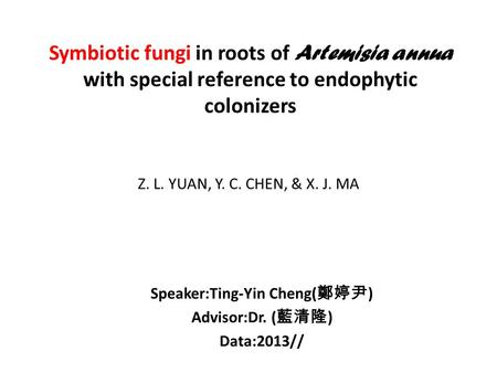 Symbiotic fungi in roots of Artemisia annua with special reference to endophytic colonizers Speaker:Ting-Yin Cheng( 鄭婷尹 ) Advisor:Dr. ( 藍清隆 ) Data:2013//