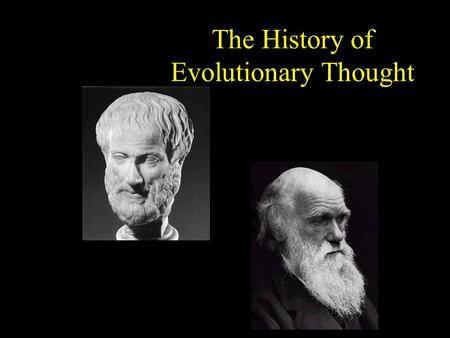 The History of Evolutionary Thought. Aristotle (384-322 B.C.) Ladder of Life »2 types of animals – those w/ blood & those w/o Animals classified by their.