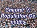 1. 2 Genetic structure of a population & Allele and genotype frequencies Lecture 4.