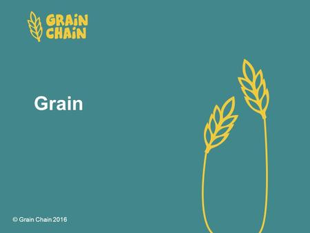 Grain © Grain Chain 2016. Grain Activity session 1 Grain Do you know what each of these grains is called?