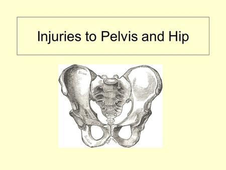 Injuries to Pelvis and Hip. Anatomy of Pelvis Bones of pelvic girdle 1. ilium 2. ischium 3. pubis 4. sacrum ** ilium, ischium, and pubis combined form.