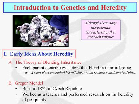 essay heredity environment