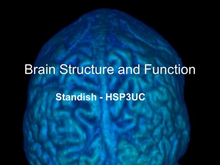 Brain Structure and Function Standish - HSP3UC. Fun Facts About the Brain These facts will teach you interesting bits of information about the physical.