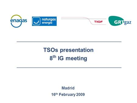 Madrid 16 th February 2009 TSOs presentation 8 th IG meeting.