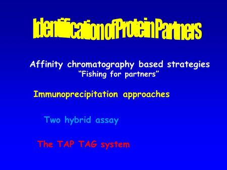 "Affinity chromatography based strategies ""Fishing for partners"" Immunoprecipitation approaches The TAP TAG system Two hybrid assay."