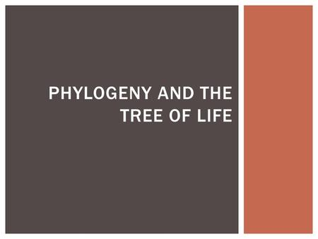 PHYLOGENY AND THE TREE OF LIFE.  Phylogeny is the evolutionary history of a species or a group of species.  To determine how an organism is classified,