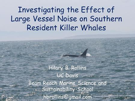 Investigating the Effect of Large Vessel Noise on Southern Resident Killer Whales Hilary B. Rollins UC Davis Beam Reach Marine Science and Sustainability.
