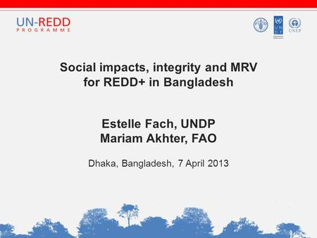 Social impacts, integrity and MRV for REDD+ in Bangladesh Estelle Fach, UNDP Mariam Akhter, FAO Dhaka, Bangladesh, 7 April 2013.